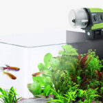 Automatic fish food feeder sitting on top of glass tank aquarium