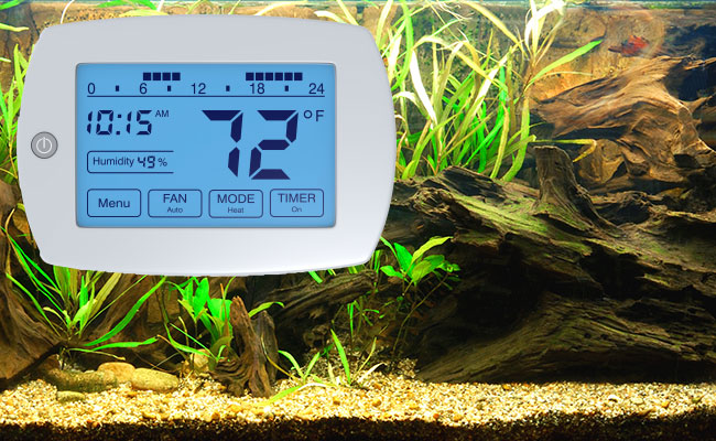 Temperature controller for heater attached to front of fish tank