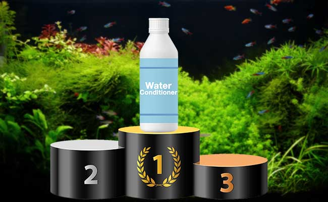 Best water conditioner sitting on top of winners podium