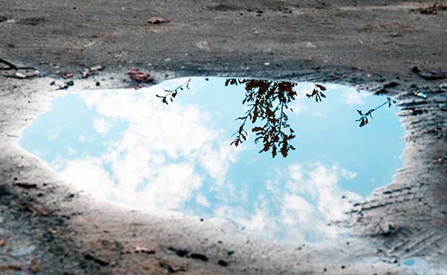 Still surface of puddle of water reflecting surroundings no agitation