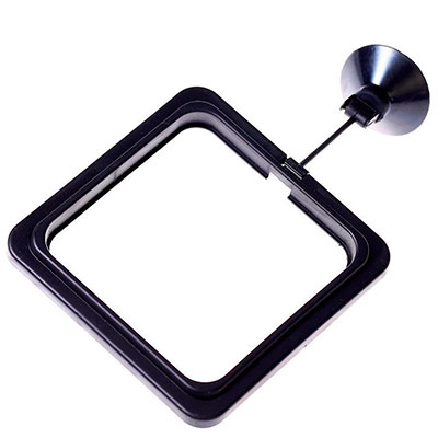 The best square fish feeding ring