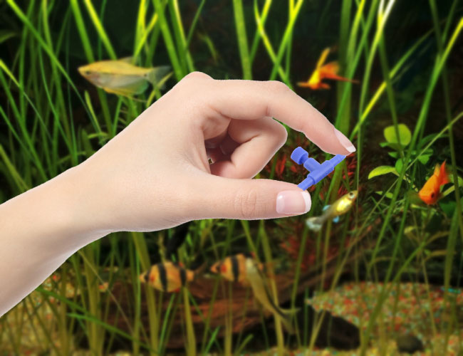 Woman's hand holding aquarium airline control valve in front of fish tank