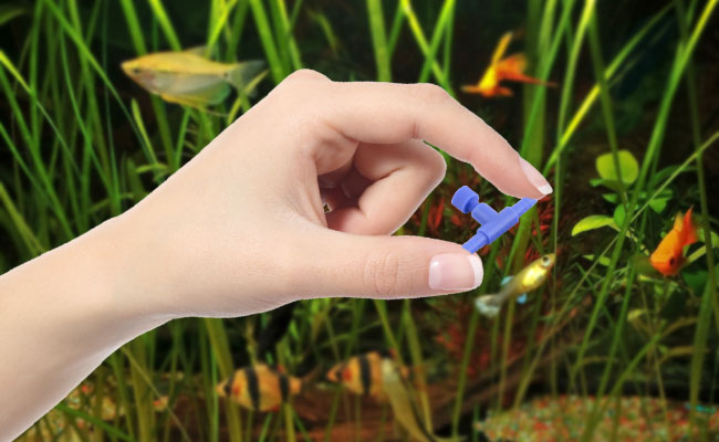 Woman's hand holding aquarium airline control valve between fingers in front of fish tank