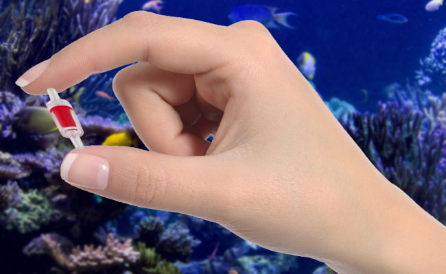Womans hand holding aquarium check valve in front of reef marine tank