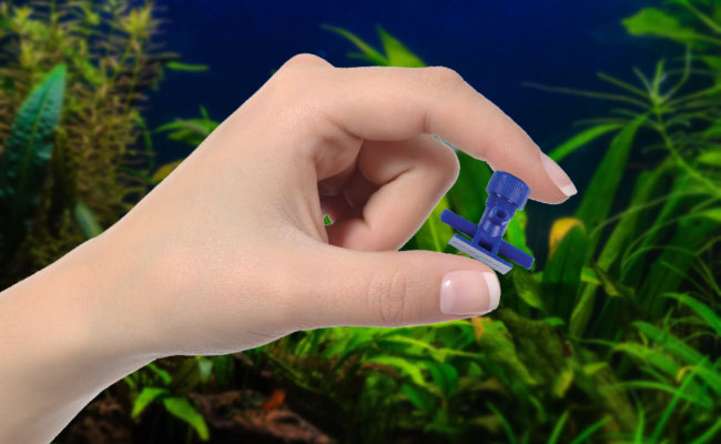 Womans hand holding bleed valve in front of fish tank
