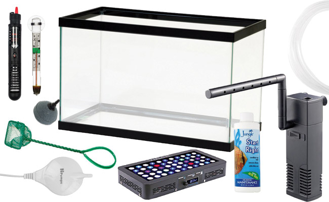 Aquarium starter kit with equipment