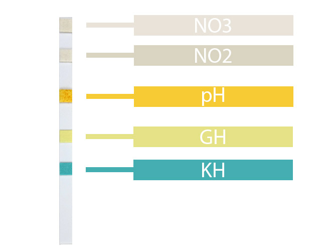 Aquarium test strip pads that test for nitrate, nitrite, pH, KH and GH diagram
