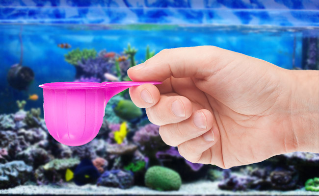 How To Perfectly Measure Anything You Add to Your Aquarium!