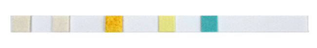 Photo of a single API 5-in-1 aquarium test strip