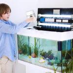 Boy using ammonia to cycle his brand new aquarium