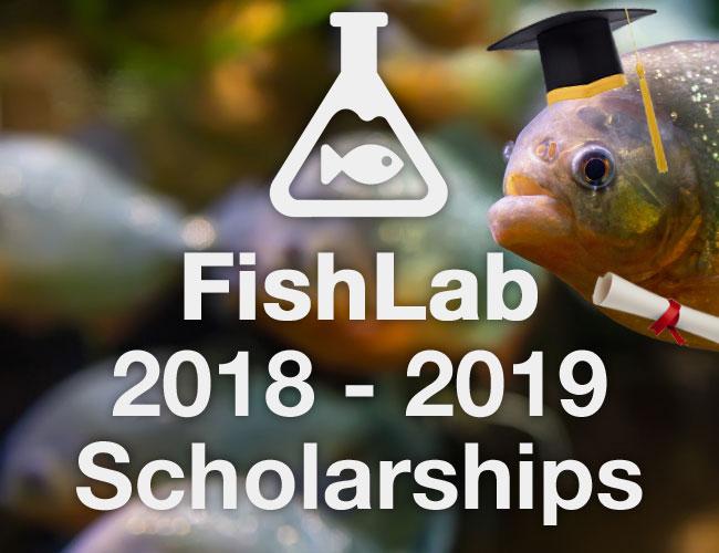 Fishlab 2018-2019 scholarship program
