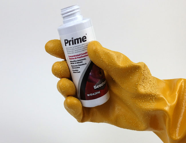 Opening the lid on a bottle of Seachem prime water conditioner with aquarium glove
