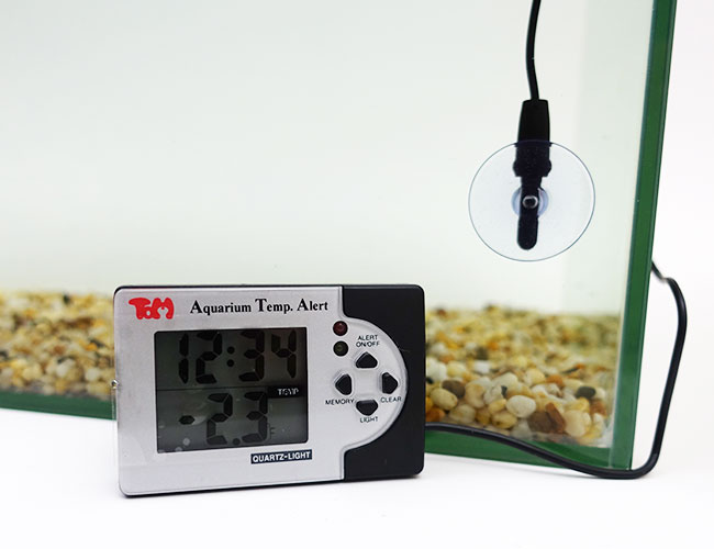 Temperature sensor probe and digital thermometer display next to aquarium