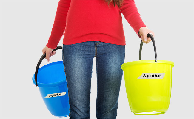 Woman holding two aquarium buckets in her hands