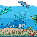 Our oceans filled with fish dolphins and crabs