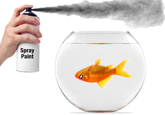 Toxic paint used on aquarium killing fish