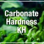 Carbonate Hardness KH in aquarium