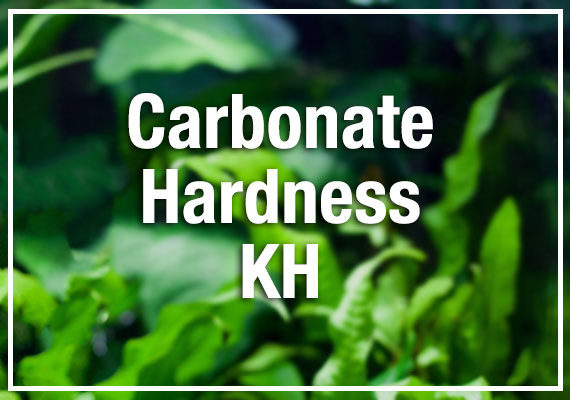 Carbonate Hardness KH in aquarium