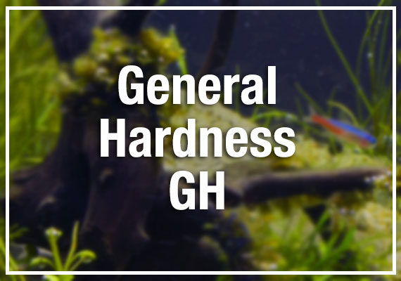 General Hardness GH in aquarium