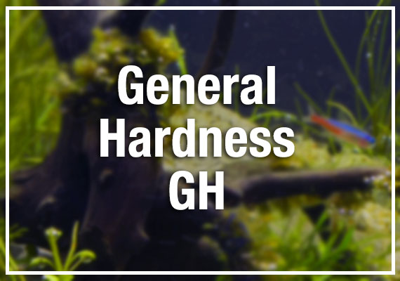 General hardness (GH) in aquarium