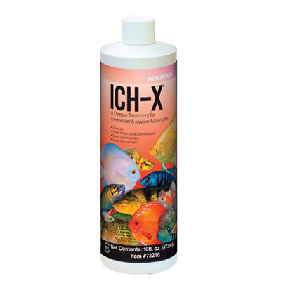 Ich-X the best medication for treating freshwater Ich
