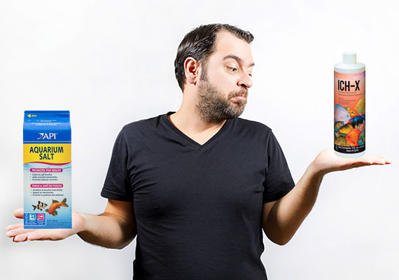 Man comparing two different Ich medications in his hands