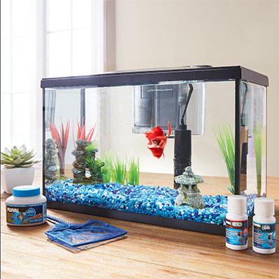 Marina 5G LED runner-up beginner aquarium kit for betta tank