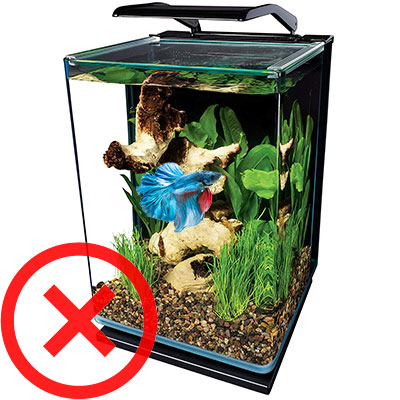 Tall Marineland 5-gallon Portrait Glass LED aquarium wrong shape for betta