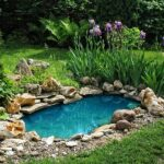 What are the best fish pond liners on the market