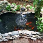finished pond with koi fishes