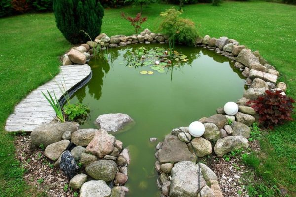 clean fish pond