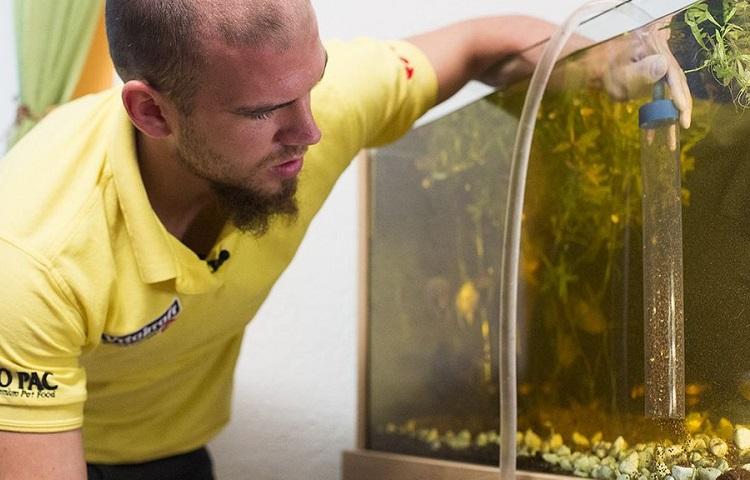 aquarium disasembling
