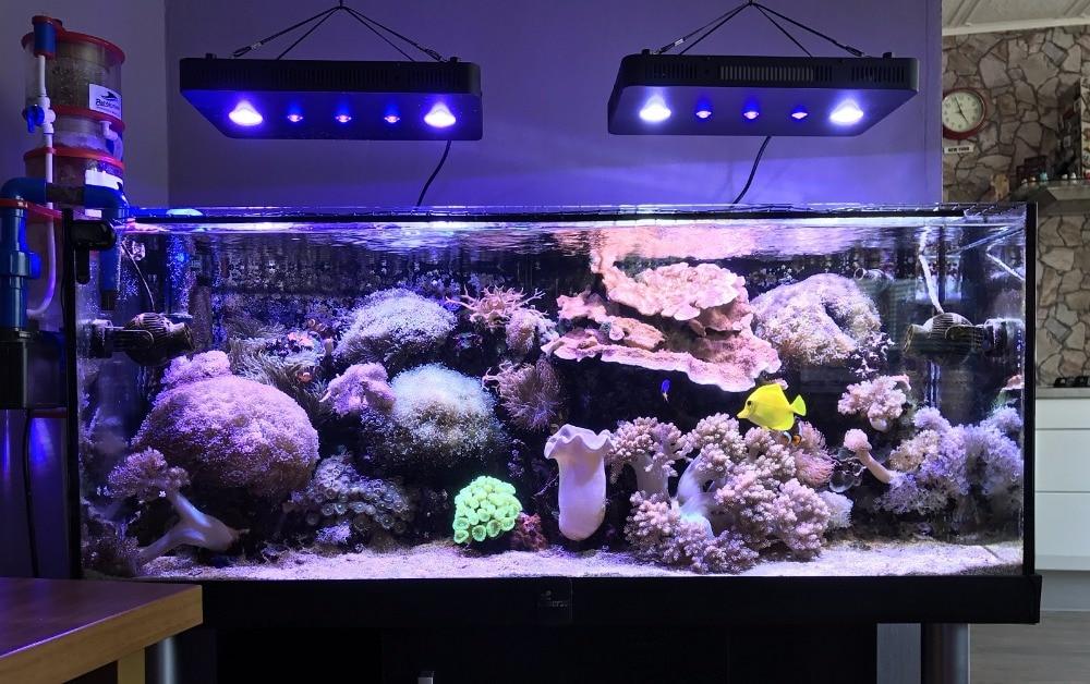 LED Aquarium Light 5